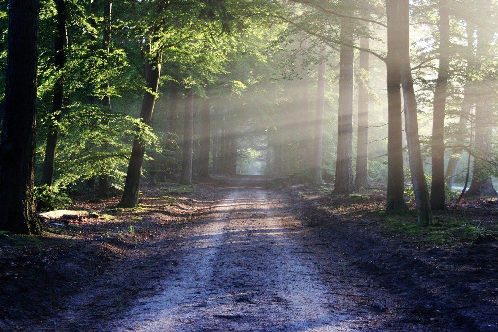 chemin spirituel